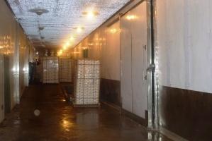 Tại sao nên sử dụng kho lạnh bảo quản rau củ?