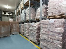 Đóng gói hàng hóa đông lạnh (Packaging)