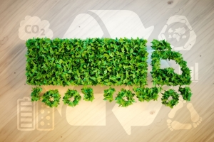 Xu hướng Logistics xanh - Chiến lược phát triển bền vững của doanh nghiệp