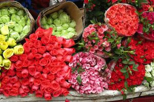 Phương pháp nào bảo quản hoa tươi hiệu quả nhất?