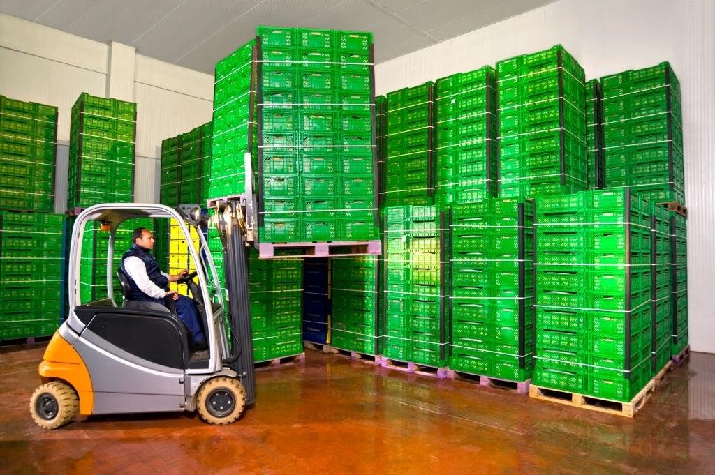 Giải pháp tích hợp kho lạnh và bốc dỡ hàng hóa được rất nhiều doanh nghiệp lựa chọn