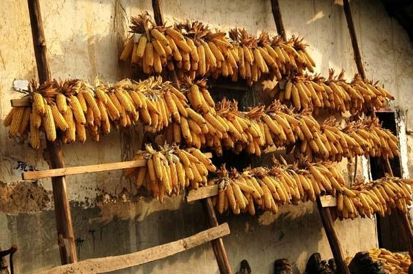 hương pháp bảo quản thực phẩm đã được áp dụng từ rất lâu về trước